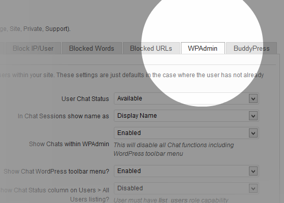 wordpress-chat-2042-settings-common-wpadmin