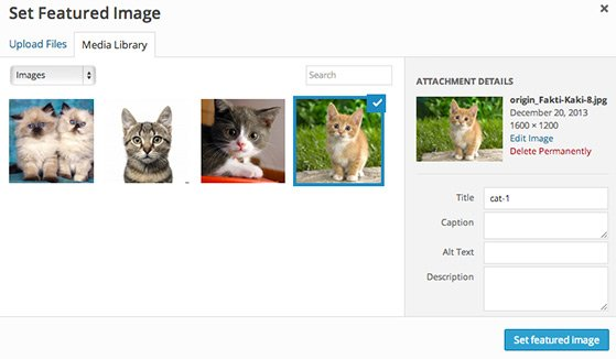 Click the 'Set Featured Image' button and your image will be added to the post.