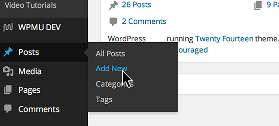 Hover over 'Posts' and click 'Add New'.