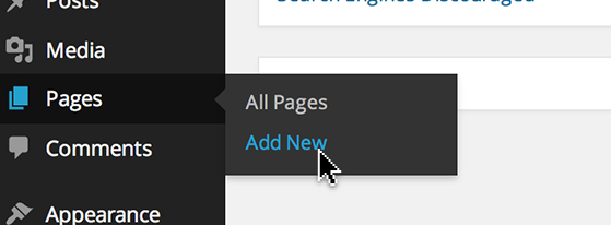 Hover over 'Pages' in the dashboard and click 'Add New'.