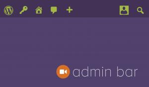 The Admin Bar