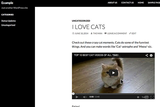 Click the 'Preview Changes' button and see how the video will appear on your site.
