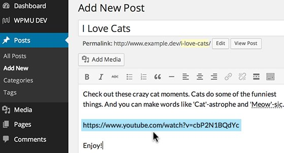 Paste a URL on its own line making sure it is not Hyperlinked.