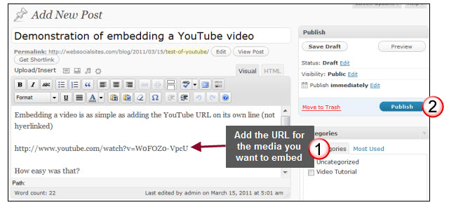 Embedding videos, images and media into posts and pages