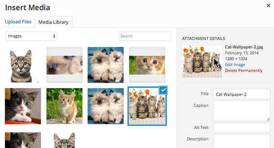 Edit 'Attachment Details' of the selected image.
