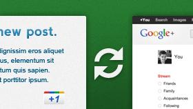 the-google-plus-plugin