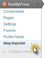 Ning Importer in BuddyPress menu