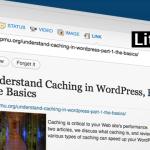 Status Lite Plugin for WordPress
