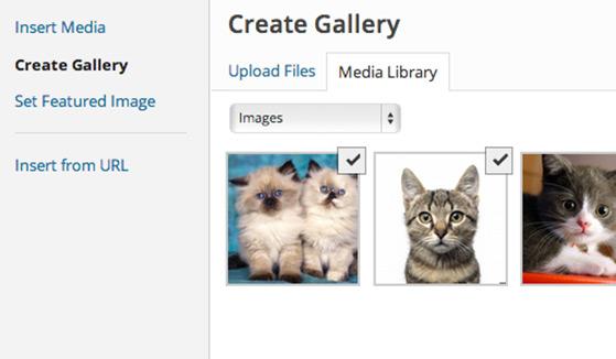 gallery-checkbox