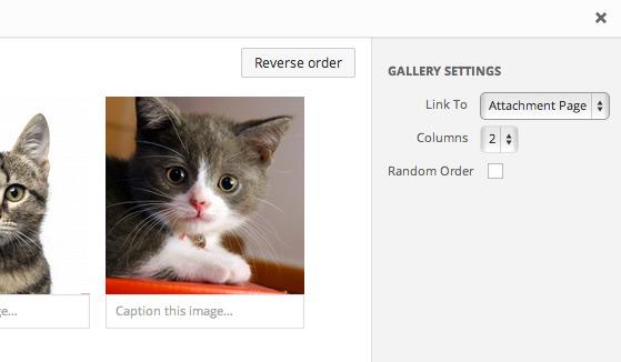 gallery-settings