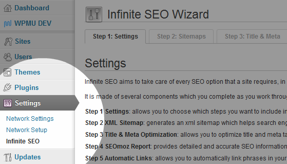 Infinite SEO Network Settings
