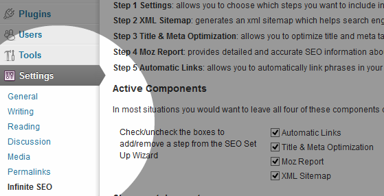 Infinite SEO Single Site Settings