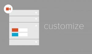 The Customizer