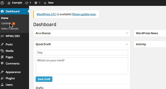 A banner appears in the WordPress Dashboard when updates are available.