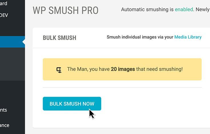 smush-usage-3