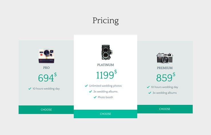 Clearly show customers what they can expect from the simple, clean, custom-built pricing table.