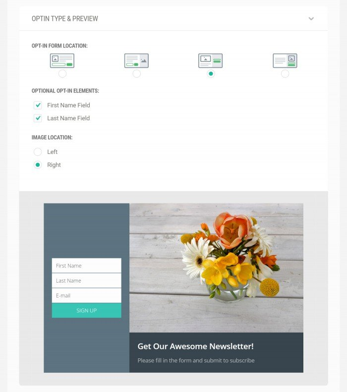 New_Optin_Type_and_Preview3