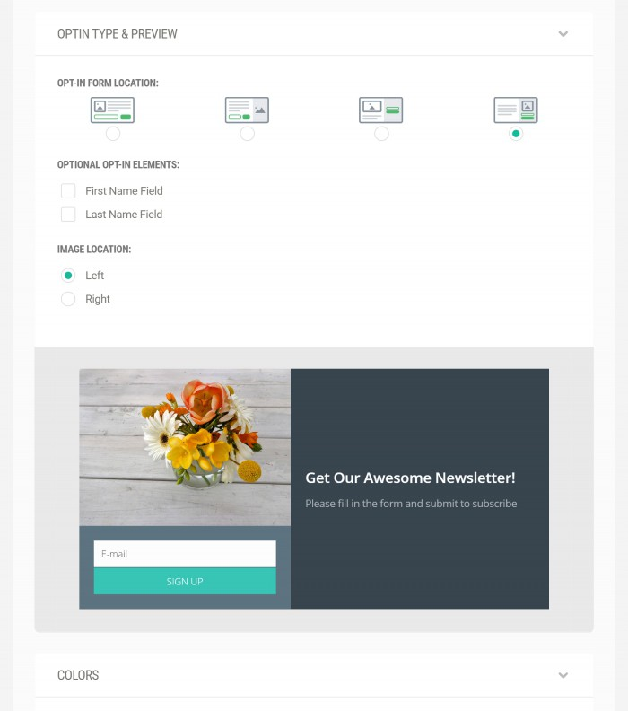 New_Optin_Type_and_Preview4