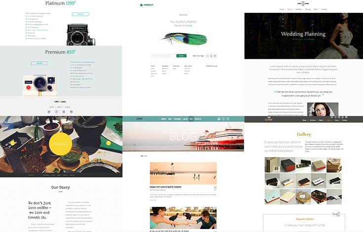 4 built-in page layouts to get your started then create your own.