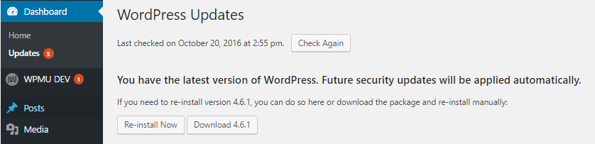 check for wordpress updates in the wp-admin