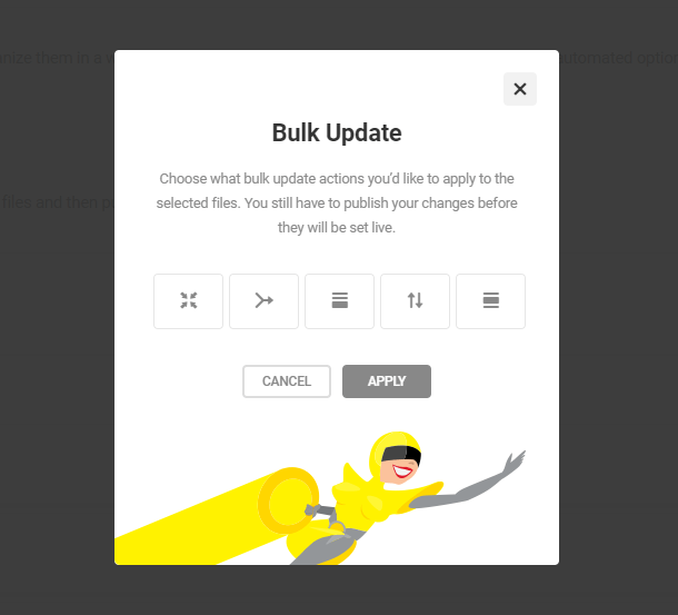 bulk update feature