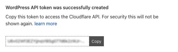 Copy Cloudflare API token