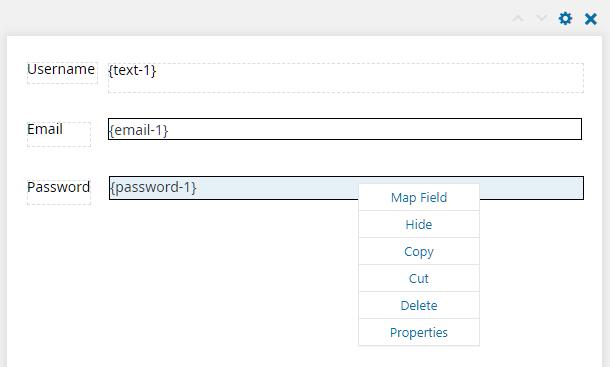 Field options in E2Pdf