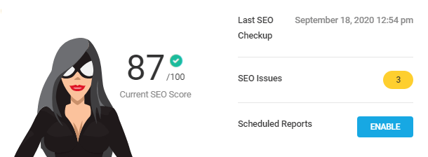 seo-checkup-overview