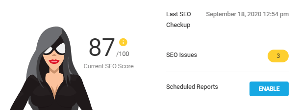 SEO Checkup overview