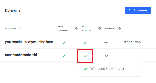 Hub 2.0 showing wildcard SSL certificate issued to a domain