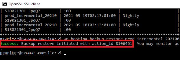 backups-restore-success