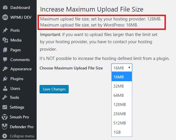 Choose file size limit WordPress