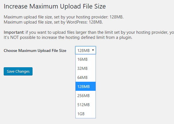 Increase file size drop-down menu