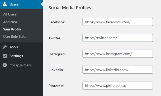 Branda-author-box-profile-social-accounts