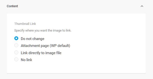 Branda-document-shortcode-content-options