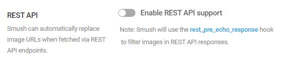 Activer la prise en charge de l'API REST