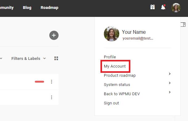 locating wpmu dev profile