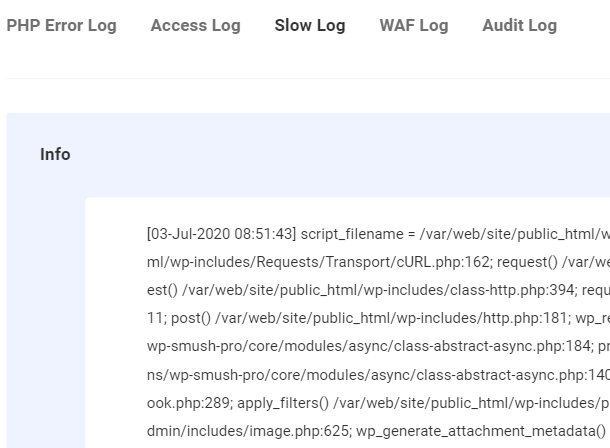 WPMU DEV slow log
