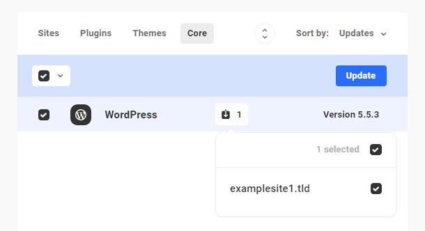 Update WordPress core on selected sites in Hub 2.0