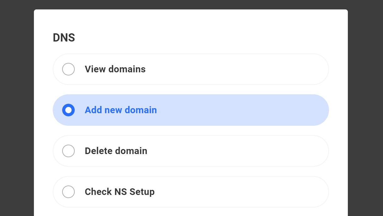 dns custom user example