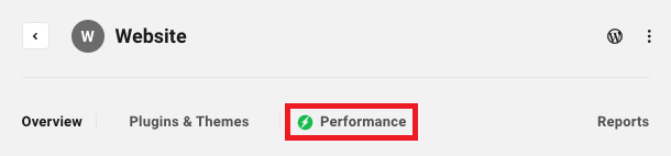 Allows the user to access a site's Performance module.