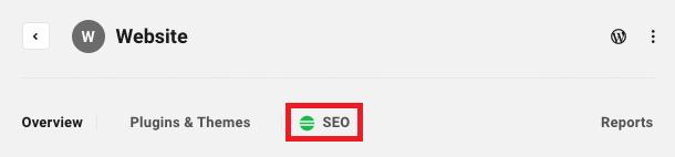 Allows the user to access a site's SEO module.