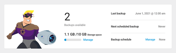 Snapshot backup overview